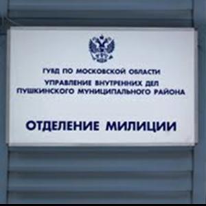 Отделения полиции Пичаево